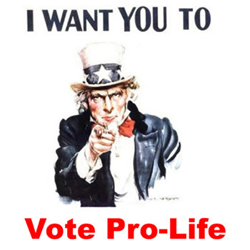 I_want_you_to_vote_pro_life.jpg