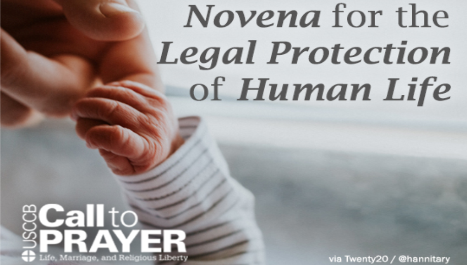 Novena_Call_to_Prayer_Homepage_Ad.png