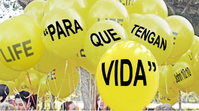 Roe_Memorial_Balloon_Header_Spanish.png