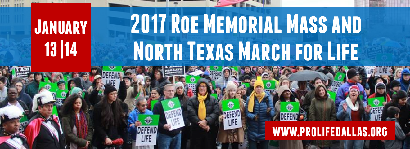 Roe_Memorial_Events_English_FB_Banner_2017.png
