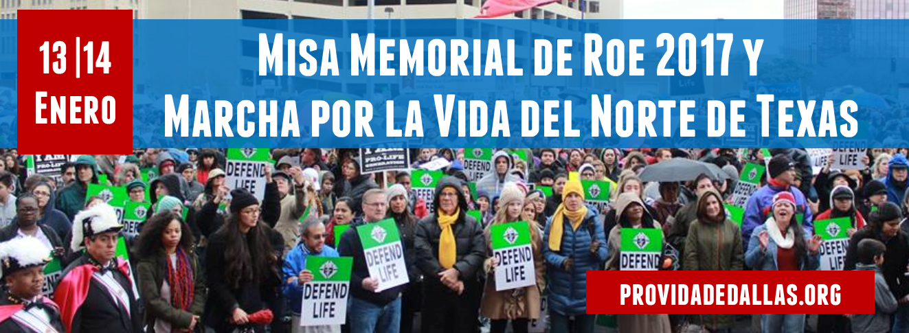 Roe_Memorial_Events_Spanish_FB_Banner_2017.png