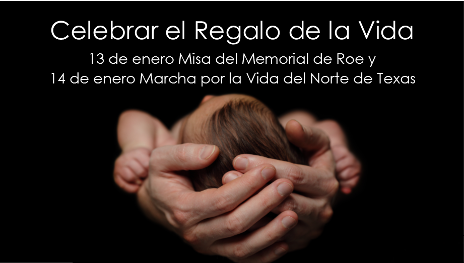 Roe_Memorial_Homepage_Spanish_Ad_2016.png