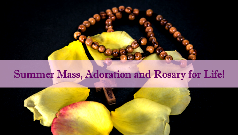 Summer Mass, Adoration and Rosary for Life!