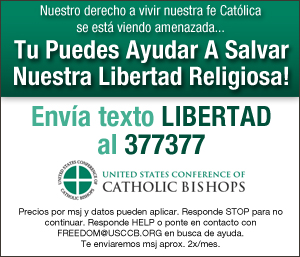 USCCB Spanish Text