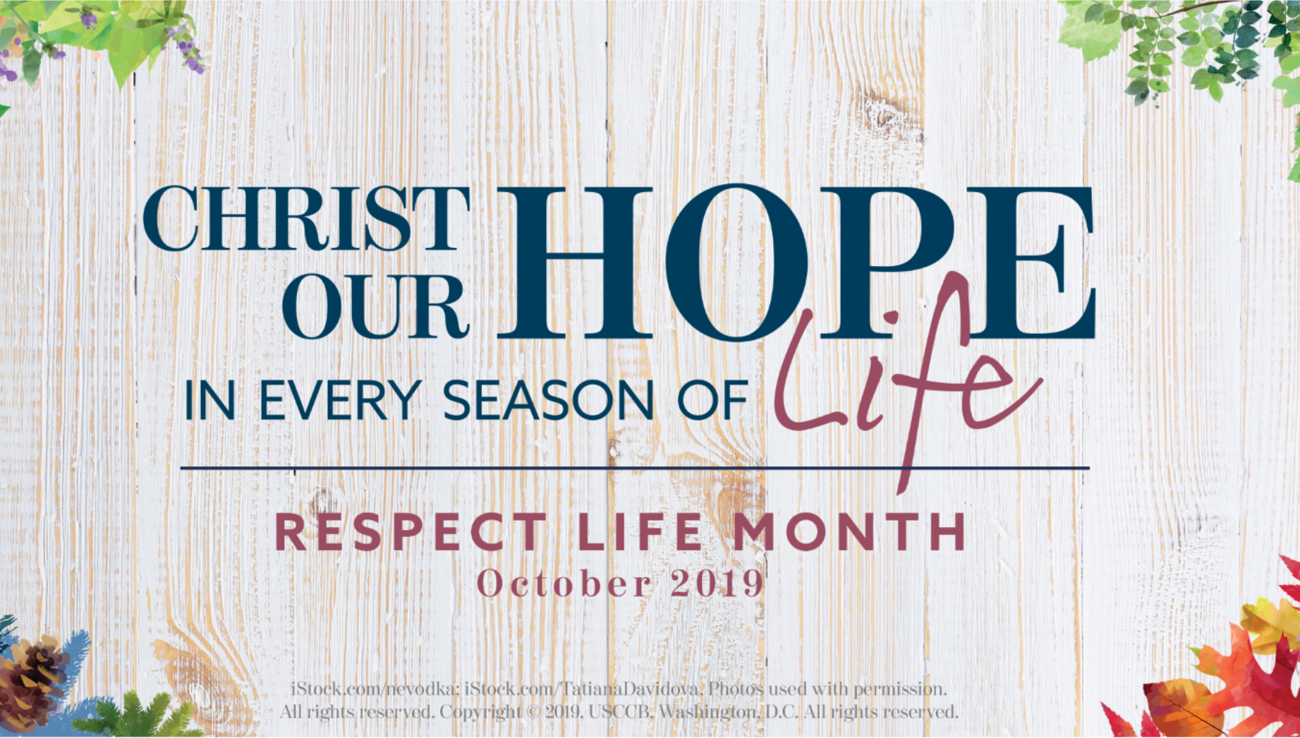 Web_Ad_-_repect_life_month_2019.png