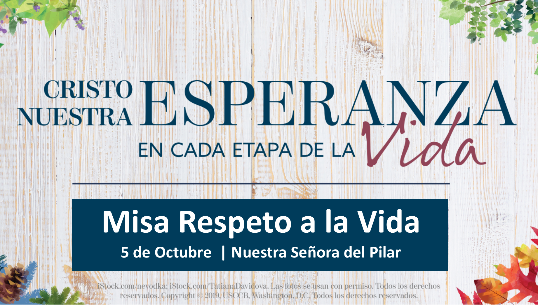 Web_Ad_-_respect_life_mass_2019_SPANISH.png